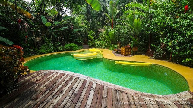 Beautiful Deck and Pool