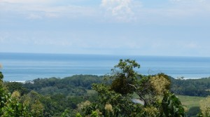 Spectacular Ocean View Lot Ready to Build in Hatillo