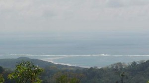 2 Acre Rainforest Lot with Ocean Views of Marino Ballena