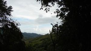 2.5 Acre Residential Development Lots at Bosques de Lagunas