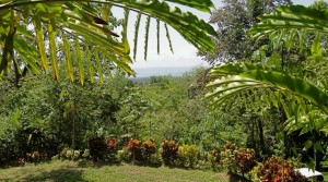 2.17 Acre Development Lot in Uvita at Brisas del Rio