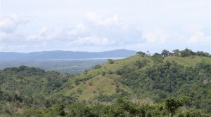 Over 4 Acres of Private Ocean View Ridge Around Ojochal