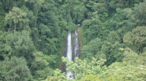 214 Acre Savegre Waterfall Farm Perfect for Conservation or Ecotourism