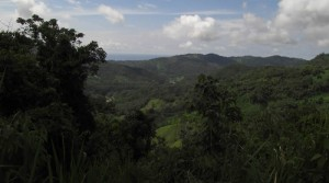 30 Acre Fertile Farmland Ranch in Platanillo Above Dominical