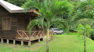Affordable Jungle Cabin With Fruit Trees and Wildlife