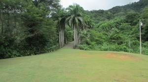 17 Acre Ocean View Property In Dominical With Small Rustic Home