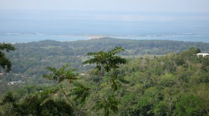 King Of The Hill 13 Incredible Ocean View Acre Land Parcel In Uvita