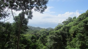 Beautiful Ocean View Home Building Site Close To Dominicalito Beach
