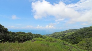 Ocean View Home Site In An Exclusive Community Above Dominical