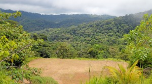 Rainforest Home Sites In Private Dominical Mountaintop Community
