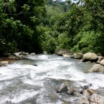 Freshwater Rivers