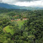 Platanillo Estates
