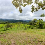 Last Lot Available (8.1 Acres)