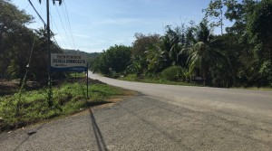 Prime Commercial Building Site In Dominical With Highway Frontage
