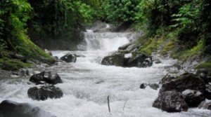 100 Acres With Beautiful Rivers And Waterfalls Near Quepos