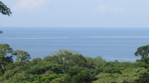 Ocean View Land Parcel With Highway Frontage At Ballena Beach