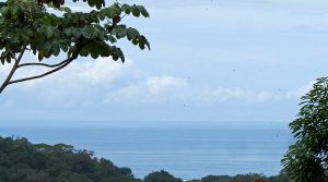 Great Deal For An Ocean View Lot By The Beach In Canto Del Mar
