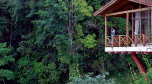 Clean Energy Nature Compound With Waterfalls And Organic Coffee Farm