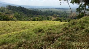 Large Home Sites In Miravalles With San Isidro City Views