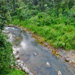 Morete River In Uvita