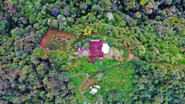 271 Acres With B&B Coffee Farm