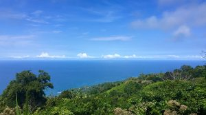 Ocean View Lot In A Highly Desirable Community With Resort Amenities