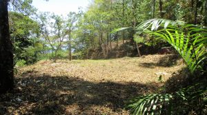Large Land Parcel In Dominicalito Bordering A River In The Rainforest