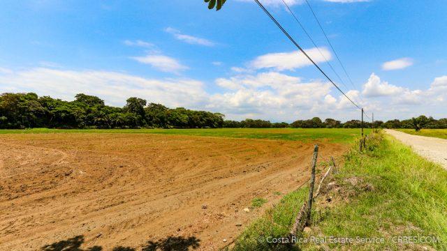Rice Farm Agricultural Land At Zancudo Beach Costa Rica