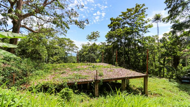 1.66 Acre Land In Bahia Ballena for Sale
