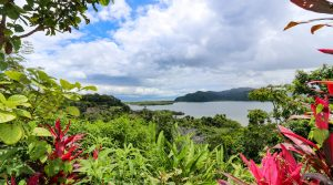 Unique Property Overlooking Pristine Golfito Bay and Golfo Dulce