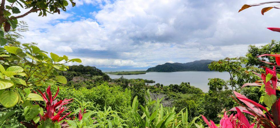 Golfo Dulce View