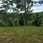 Home Site Near Dominical Ready for Development