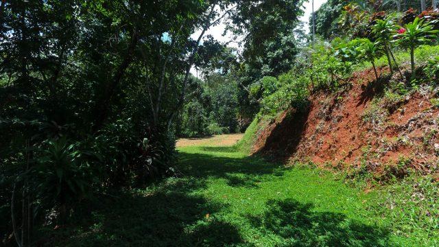 Land in Costa Rica