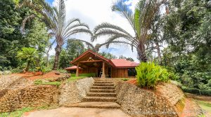 Fixer Upper Home in Platanillo with Extra Building Sites on 3.6 Acres
