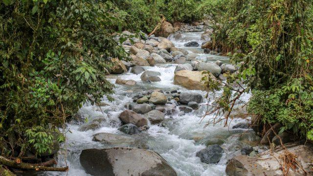 Fresh Water Source