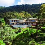 Luxury Estate with 72-Acres of Rainforest