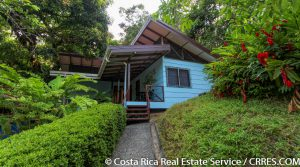 Ocean View Rainforest Retreat with Fresh Water Springs