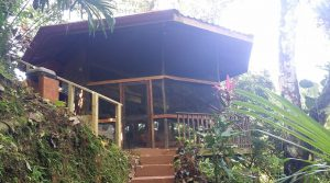Tropical Home in the Rainforest Next to Community Waterfall