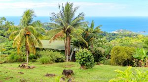 Historic Lodge with Epic Whitewater Ocean Views in Escaleras of Dominical