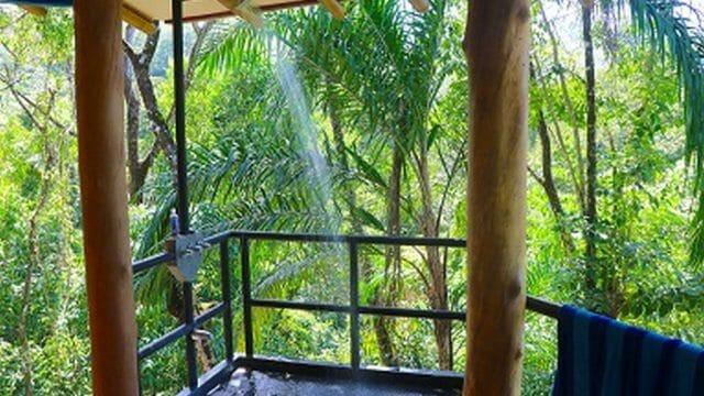 Open Rainforest Shower