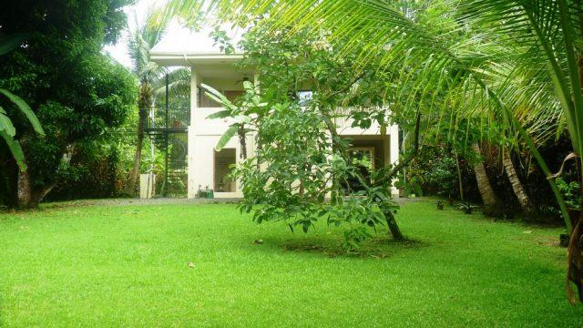 Lush Tropical Setting