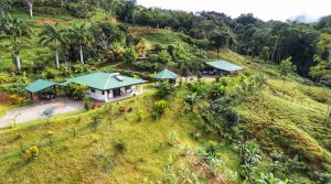 Home in Platanillo with Fruit Orchard, Pastures, and Freshwater Creek
