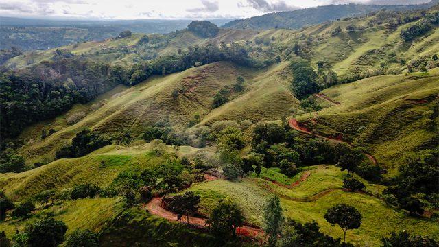 Rolling Pasture Land