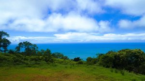 Ocean View Home Site in a High-End Dominical Gated Community