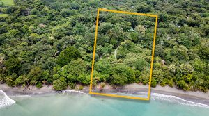 Beachfront Property For Sale in Costa Rica