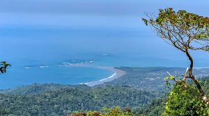 105 Acres with White Water Whale's Tail Ocean Views Above Uvita