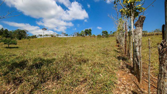 Segregated Farming Fields