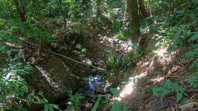 Natural Creek On Site
