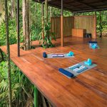Jungle Yoga Platform