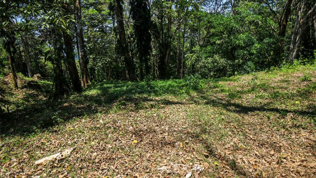 Over 4-Acres Near Dominical